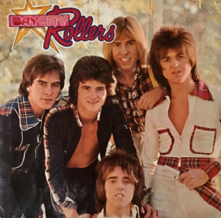 Bay City Rollers - Wouldn't You Like It? (LP) (G/VG-)
